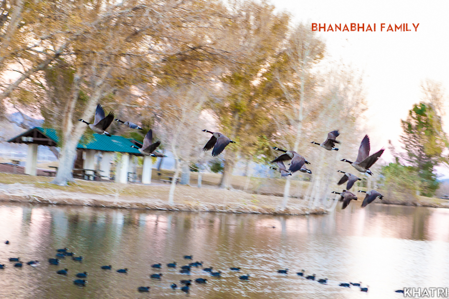 Bhanabhai-Family-New-Jersey-Photography-35